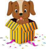 Dog cartoon. Coming out of gift box Royalty Free Stock Images