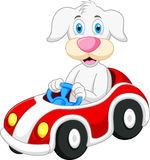 Dog cartoon driving car Royalty Free Stock Images