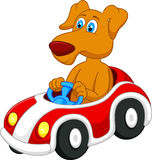 Dog cartoon driving car Stock Photography