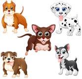 Dog cartoon set collection Royalty Free Stock Photo