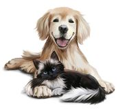 A dog and a cat. A dog and a black cat watercolor painting royalty free illustration