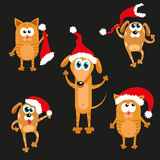 Dog and cat in Christmas hat. new year set Royalty Free Stock Photography