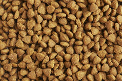 Dog or cat food close up Stock Images