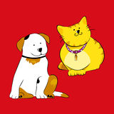 Dog and Cat. Friendship forever. This  is isolated on color background Stock Photos