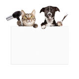Dog and Cat Grooming Blank Sign. A cat holding a hair dryer and a dog holding cutting shears while hanging over a blank sign that is ready for you to enter your royalty free stock photos