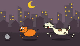 Dog,cat,mouse cashing each other. Represent a dog trying to catch a cat, and the cat trying to catch a mouse in a city night Royalty Free Stock Image