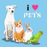 I Heart Pets Royalty Free Stock Images