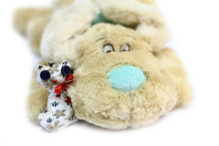 Dog and cat toy Royalty Free Stock Images