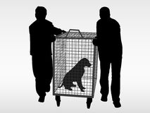 The dog catchers. Help the animals. Adopt a pet from the animal shelter Royalty Free Stock Photos