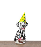 Dog celebrating a birthday. With a piece of cake Royalty Free Stock Photos