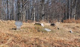 Dog cemetery. Some headstones on the cemetery for hunting dogs on Zdar Hill, Beskydy mountains, Czech Republic Royalty Free Stock Photography