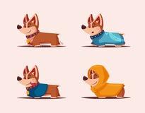 Dog character. Best friend. Cartoon vector illustration. Cute puppy. Funny corgi vector illustration