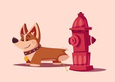 Dog character. Best friend. Cartoon vector illustration. Cute puppy. Funny corgi pees on a hydrant royalty free illustration