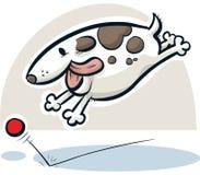 Dog Chasing Ball Royalty Free Stock Photo