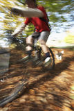 Dog Chasing Man On Mountain Bike Royalty Free Stock Photography