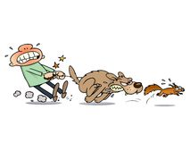 Dog chasing a squirrel Royalty Free Stock Images