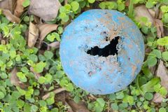 A Dog Chew Ball. A close up view of a blue dog chew ball that has holes and teeth marks on in the outside garden stock image