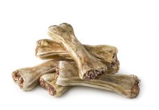 Dog chew bone. Isolated on a white background Stock Image