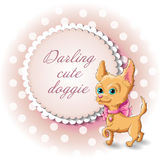 Dog Chihuahua. Illustration of a cute dog Chihuahua vector Stock Images
