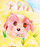 Dog. child's drawing. Stock Photos