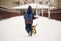Dog and child in the snow Royalty Free Stock Photo