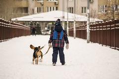 Dog and child in the snow Royalty Free Stock Image