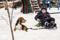 Dog and child in the snow Stock Images