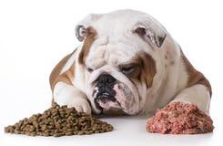 Dog choosing kibble Stock Photo