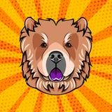 Dog chow chow face head muzzle vector . Dog chow chow face head muzzle vector illustration Stock Image