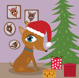 Dog with Christmas presents. Pinscher puppy with gifts and Christmas tree Stock Photo
