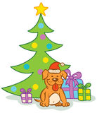 Dog and  christmas tree Royalty Free Stock Image