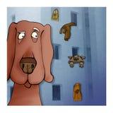 Dog city Stock Photos