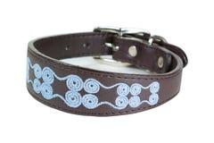 Dog collar Royalty Free Stock Photo