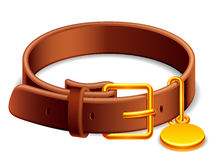 Dog collar. Leather dog collar with a golden buckle Stock Images
