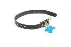 Dog collar. A dog collar with a id tag on it Stock Photo