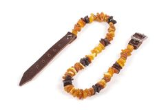 Dog collar of amber on the white royalty free stock images