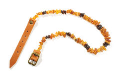 Dog collar from Baltic amber isolated on the white background Royalty Free Stock Photos
