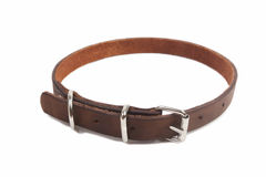 Dog Collar Royalty Free Stock Photography