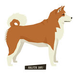 Dog collection Akita Inu Geometric style. Set royalty free illustration