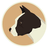 Dog collection American Staffordshire Terrier Avatar icon round Stock Photography