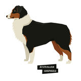 Dog collection Australian Shepherd Geometric style Royalty Free Stock Photos