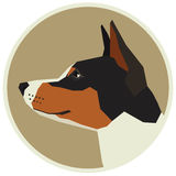 Dog collection Basenji Geometric style Avatar icon round Royalty Free Stock Photos