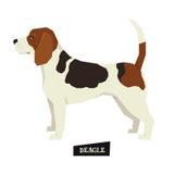 Dog collection Beagle Geometric style. Set vector illustration