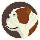 Dog collection English bulldog Geometric style Avatar icon round. Set Stock Photo