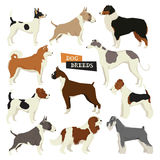 Dog collection. Geometric style. Vector set of 11 dog breeds.  Royalty Free Stock Photography