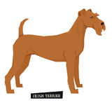 Dog collection Irish Terrier Geometric style  object Royalty Free Stock Image
