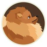 Dog collection Pomeranian Geometric style Avatar icon round Royalty Free Stock Photo
