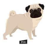 Dog collection Pug Geometric style. Set Stock Photo