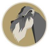 Dog collection Schnauzer Geometric style icon round Royalty Free Stock Image