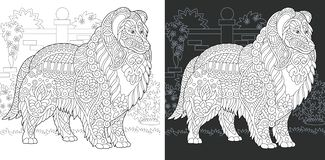 Dog Coloring Page. Dog. Coloring Page. Coloring Book. Colouring picture with rough collie drawn in zentangle style. Antistress freehand sketch drawing. Vector stock illustration